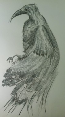 A recent drawing of a bird from my imagination